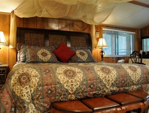 Safari Room, Time After Time Bed and Breakfast